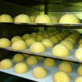 cheesemanju in oven